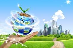 Planta que cresce fora do globo Imagem de Stock