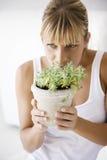 Planta que huele Imagenes de archivo