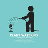 Planta que riega con el tubo de goma de la manguera Fotografía de archivo