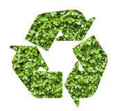 A planta recicl o símbolo Imagem de Stock