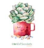 Planta suculenta pintada a mano de la acuarela en piedra del pote y del guijarro ilustración del vector