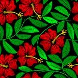 Planta tropical do hibiscus do bordado em um teste padrão sem emenda ilustração royalty free