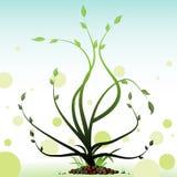 Planta verde stock de ilustración