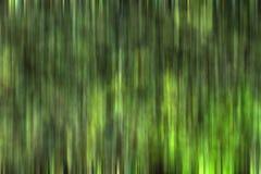 Planta verde abstracta Imagen de archivo