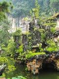 Planta verde com opinião do lago Imagens de Stock