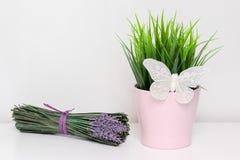 Planta verde de la primavera en pote rosado con la mariposa decorativa blanca y un manojo de flores de la lavanda en el fondo bla imagen de archivo