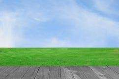Planta verde del campo y de madera contra el cielo azul Fotos de archivo