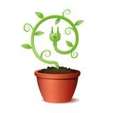 Planta verde do eco da energia Fotos de Stock