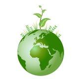 Planta verde en la tierra ilustración del vector