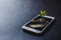 A planta verde pôs sobre moedas da pilha com o telefone esperto sobre o preto Imagem de Stock Royalty Free