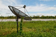 Planta verde que cultiva en plato basado en los satélites sobre el cielo azul Imagen de archivo libre de regalías