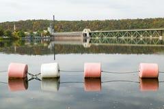 Planta y charca con los flotadores en otoño en Massachusetts occidental, Nueva Inglaterra Foto de archivo