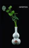 Planta y elementos de cerámica del florero imagenes de archivo