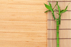 Planta y estera de bambú Foto de archivo libre de regalías