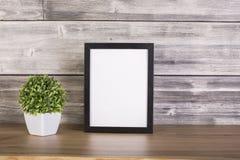Planta y marco en blanco imagenes de archivo