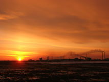 Planta y puesta del sol Imagenes de archivo