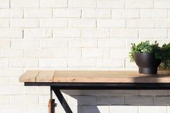 Planta y tabla abstractas en la pared de ladrillo Foto de archivo libre de regalías