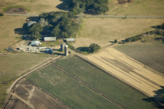 Plantaardig landbouwbedrijf, luchtmening Stock Fotografie