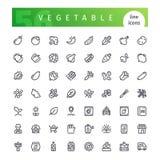 Plantaardige Geplaatste Lijnpictogrammen Stock Afbeelding