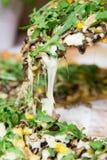 Plantaardige Italiaanse pizza met achtergrond royalty-vrije stock afbeelding
