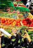 Plantaardige markt in de zomerdag Royalty-vrije Stock Foto's