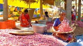 Plantaardige markt, India Stock Foto's