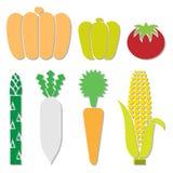 Plantaardige pictogrammen geplaatst voor om het even welk gebruik groot Vector eps10 Royalty-vrije Stock Foto