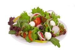 Plantaardige salade Royalty-vrije Stock Foto's