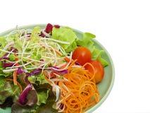 Plantaardige salade Royalty-vrije Stock Foto