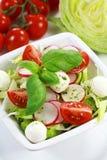 Plantaardige salade stock foto