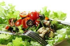 Plantaardige Salade Stock Afbeelding