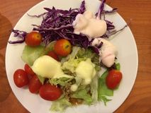 Plantaardige salade en het kleden zich Royalty-vrije Stock Afbeelding