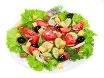 Plantaardige salade met kaas Royalty-vrije Stock Foto's