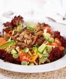 Plantaardige salade met oesterpaddestoel royalty-vrije stock afbeelding