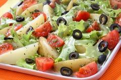 Plantaardige salademengeling Royalty-vrije Stock Foto