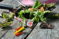 Plantaardige saladevoorbereiding op houten raadsachtergrond Royalty-vrije Stock Fotografie