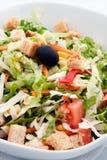 Plantaardige salat stock afbeelding