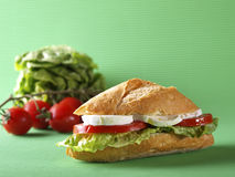 Plantaardige sandwich. Bocadillo planten-. Royalty-vrije Stock Afbeelding