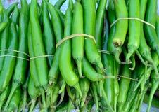 Plantaardige Spaanse peper royalty-vrije stock foto's