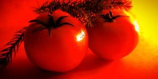 Plantaardige van de achtergrond gebruiks verse tomaat mooie voorraadfoto stock afbeeldingen
