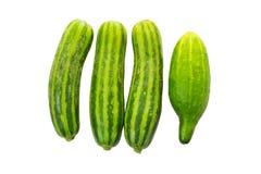 Plantaardige Voedselinstallatie Stock Foto's