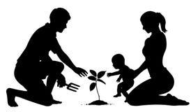 Plantación de árboles de familia Imágenes de archivo libres de regalías