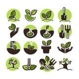 Plantación de árboles e iconos del vector de la horticultura del verde que cultivan un huerto fijados Imagen de archivo libre de regalías