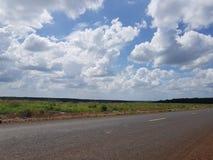 Plantación de goma en Camboya fotos de archivo