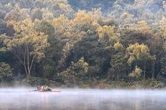 Plantaciones de la silvicultura de la punzada-Ung Fotografía de archivo