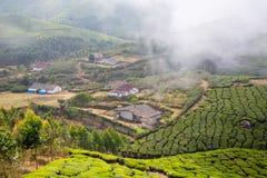Casas en el medio de una plantación de té Foto de archivo