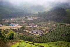 Casas en el medio de una plantación de té Imagen de archivo