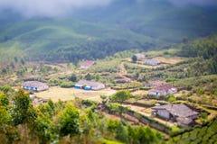 Casas en el medio de una plantación de té Foto de archivo libre de regalías