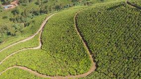 Plantaciones de t? de la visi?n a?rea de la India Estado de Kerala Cerca del lago Matupetty metrajes
