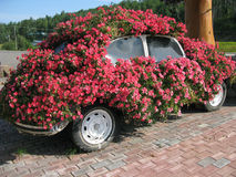 Plantador de Volkswagen Imagem de Stock
